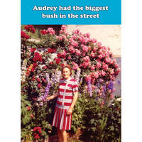 Audrey Had The Biggest Bush In The Street Greeting Card