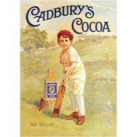 Cadbury's Cocoa Boy Cricketer Postcard