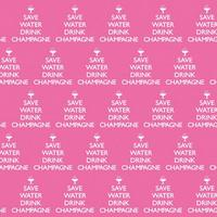 Save Water Drink Champagne Gift Wrap x 3 Sheets