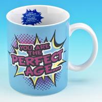 You Are The Perfect Age... Mug
