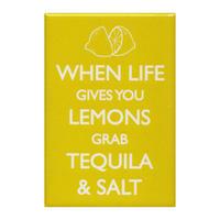 When Life Gives You Lemons Grab Tequila & Salt Fridge Magnet