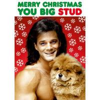 Merry Christmas You Big Stud Greeting Card