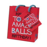 Have A Totes Amazeballs Birthday! Small Gift Bag & Tag