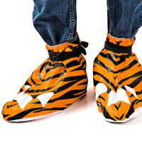 Tiger Festival Feet