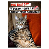 See This Cat - It Doesn't Give A F*ck About Your Birthday Greeting Card