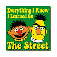 """""""Everything I Know I Learned On The Street"""" Sesame Street Die Cut Fridge Magnet"""