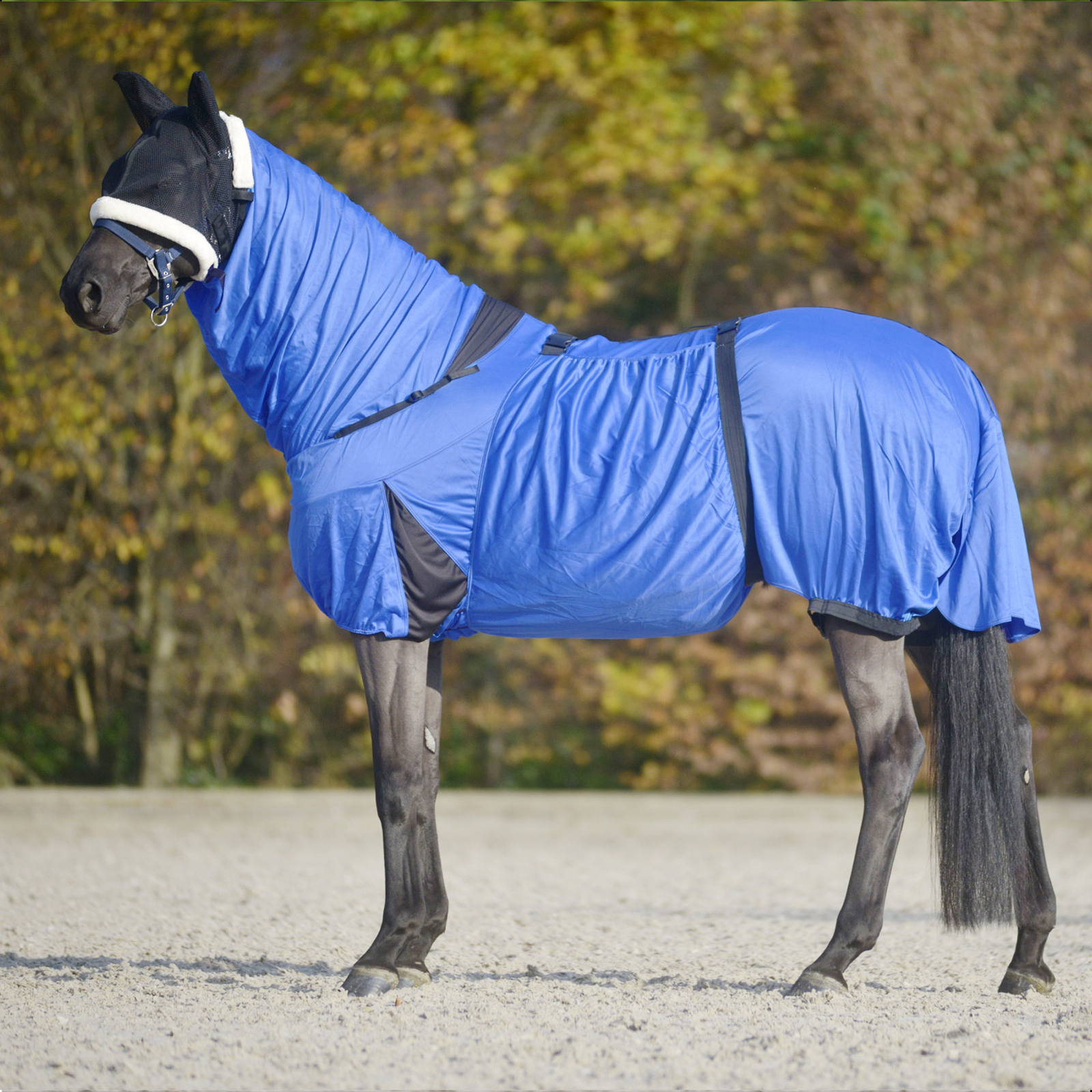 how to measure horse for fly sheet