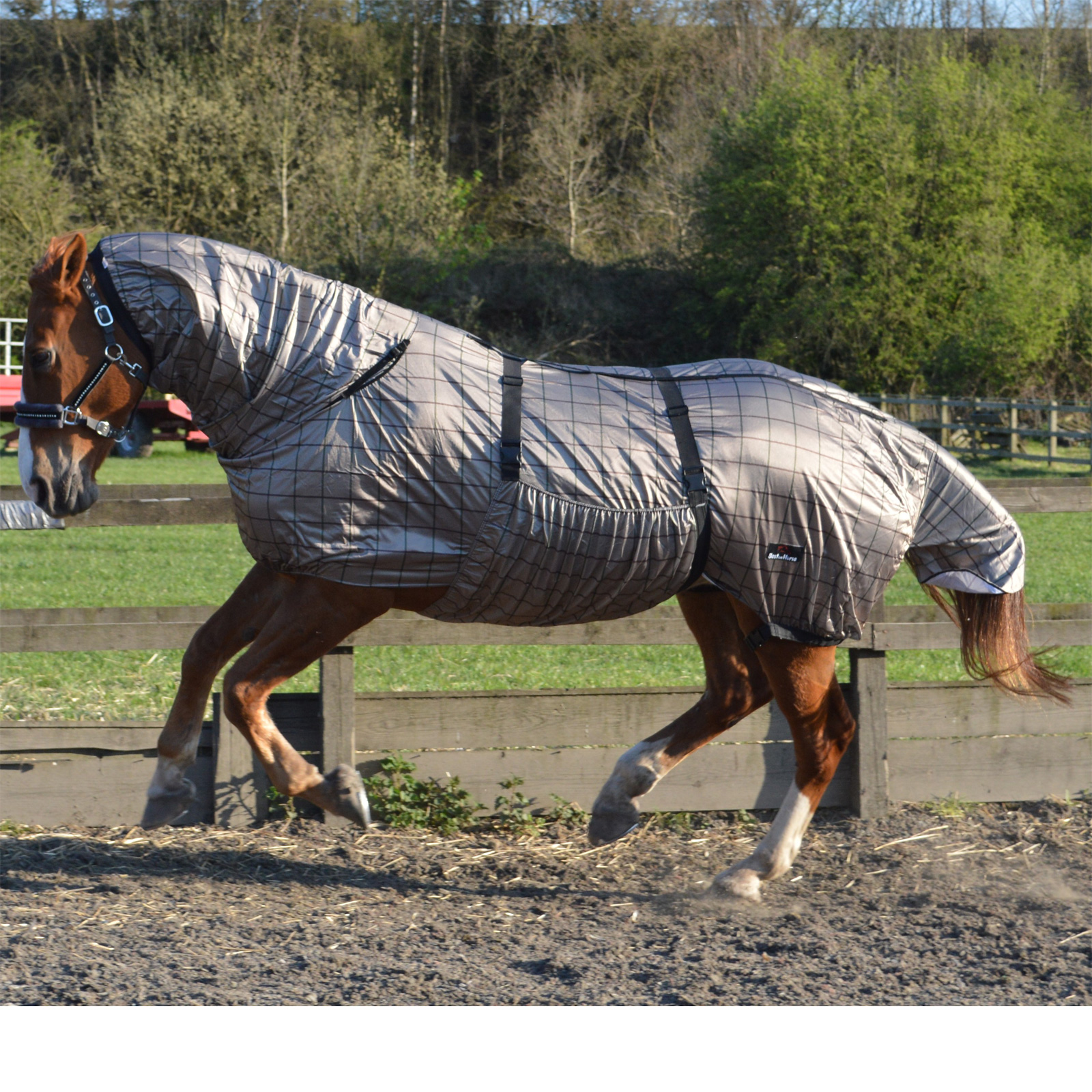 Sweet Itch Fly Rug Uv Horse Protection Belly Full Neck