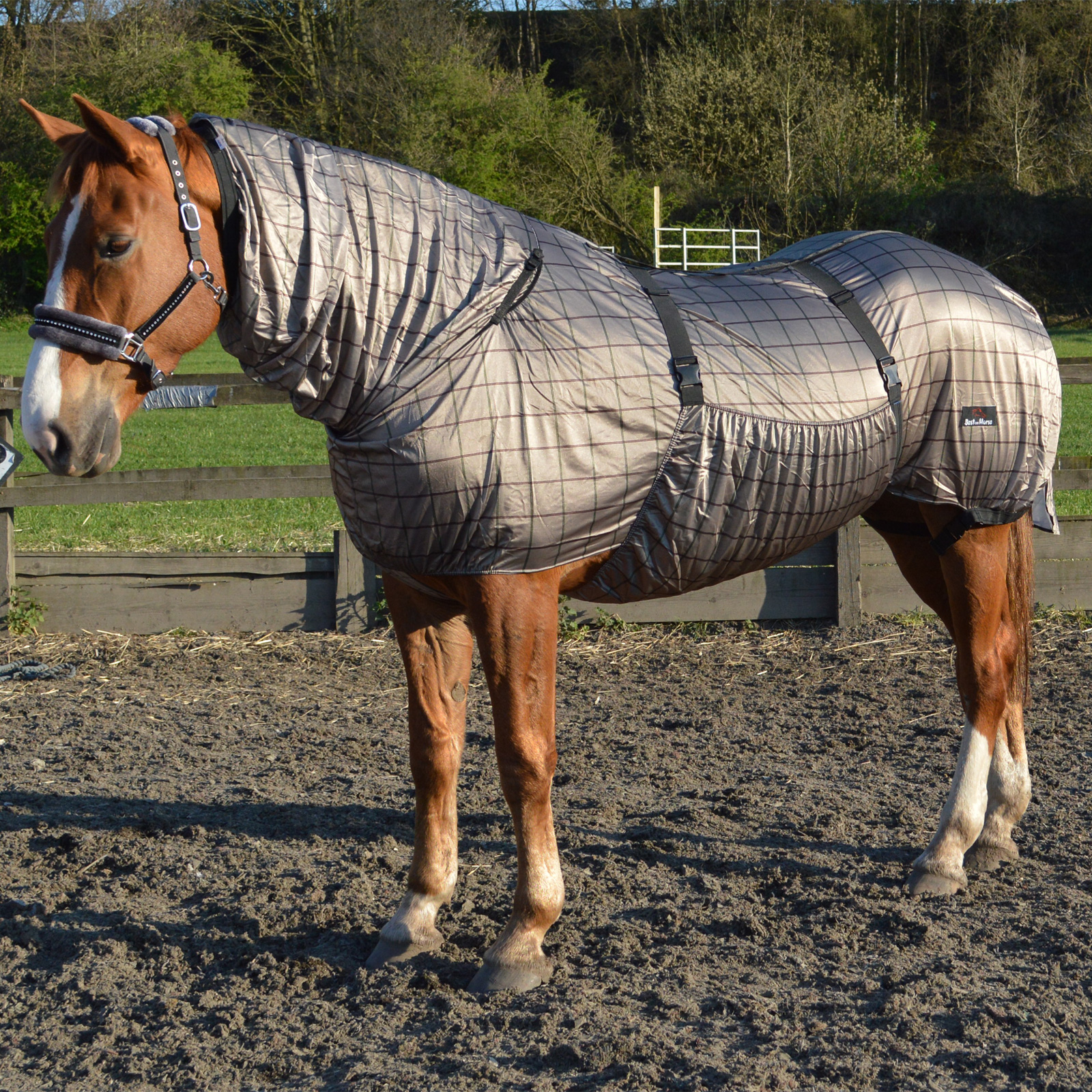 Pony Horse Fly Eczema Combo Rug Sweet Itch Breathable