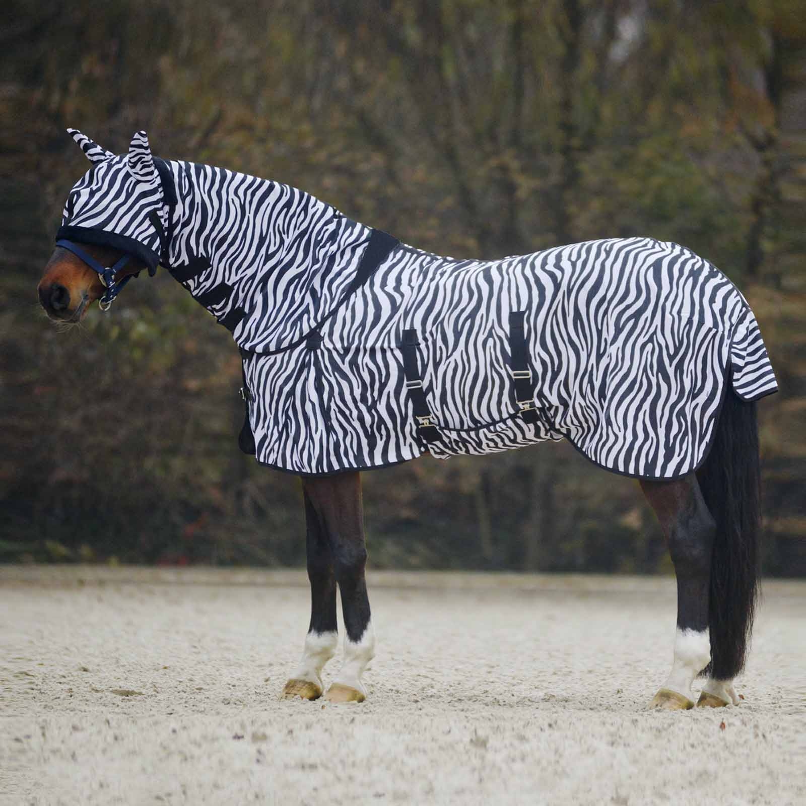 STRONG LIGHTWEIGHT HORSE COMBO TURNOUT FLY RUG WITH NECK