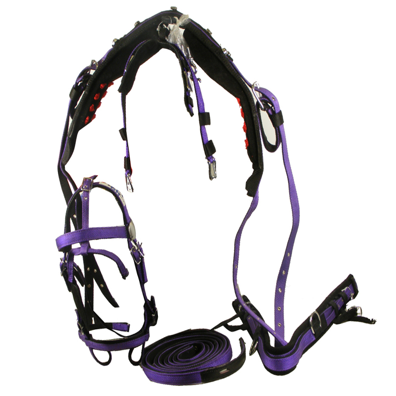 And hosting nylon webbing harnesses