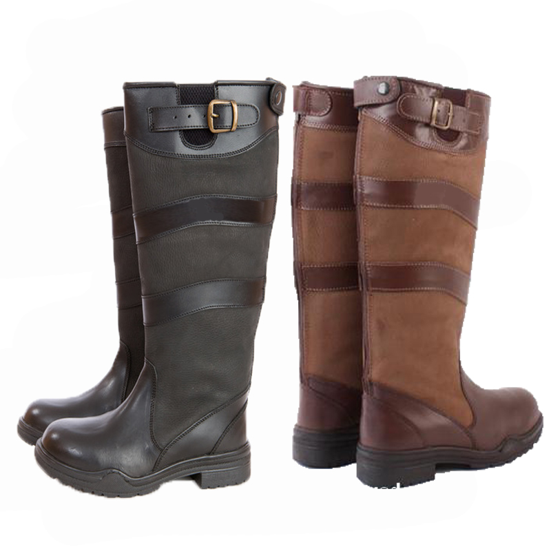 leather horse riding boots horse and lion photos