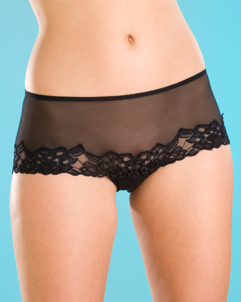 NEW LADIES CAMILLE SHEER LACE WOMENS LINGERIE UNDERWEAR KNICKERS ...