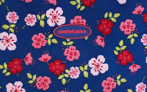 Constellation Eva Ditsy Floral Print Suitcase, 22?, Raspberry Thumbnail 4