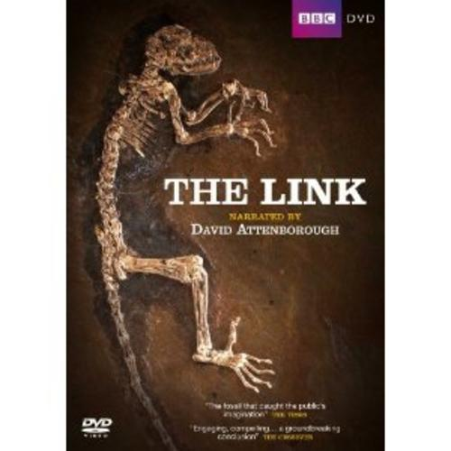 The-Link-Uncovering-Our-Earliest-Ancestor-David-Attenborough-New-DVD