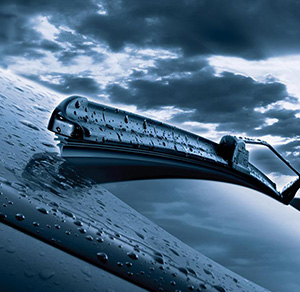 Wiper Blades & Bulbs