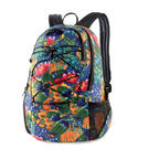 Dakine 18L Transit Backpack Pack Bag New 2014 Higgins
