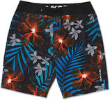 Dakine Black Sand Board Shorts 2015