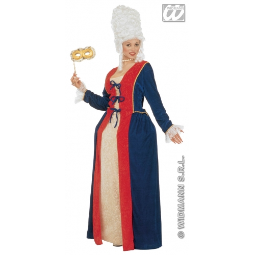 Ladies Antoinette Costume Outfit for Regency Medieval Middle Ages Fancy Dress
