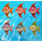 FISH SET 2 90X115mm 1 of 6 colours Decoration for Sea Nautical Marine Water Animal Creature Party