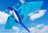 Classical Cool Dragon Kite for Adult & Kids Outdoor Beach Camping Sports Games