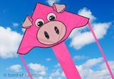 Super Flyer Pink Pig Kite for Girls Kids Fun Animal Outdoor Camping Beach Sports