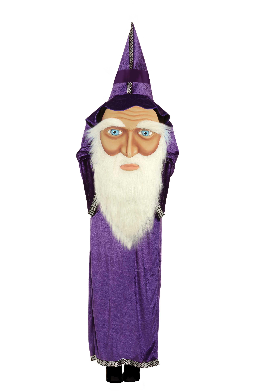 Childrens Jumbo Face Wizard Costume for Boys & Girls Halloween ...