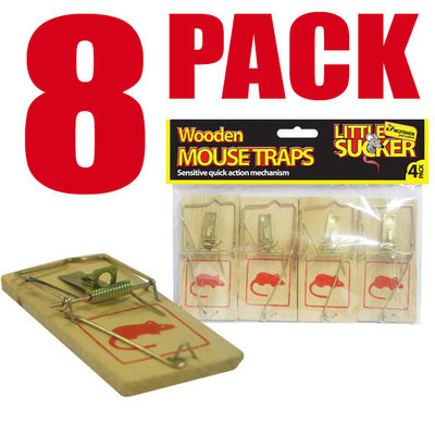 Best Bait For Humane Mouse Trap Images Frompo