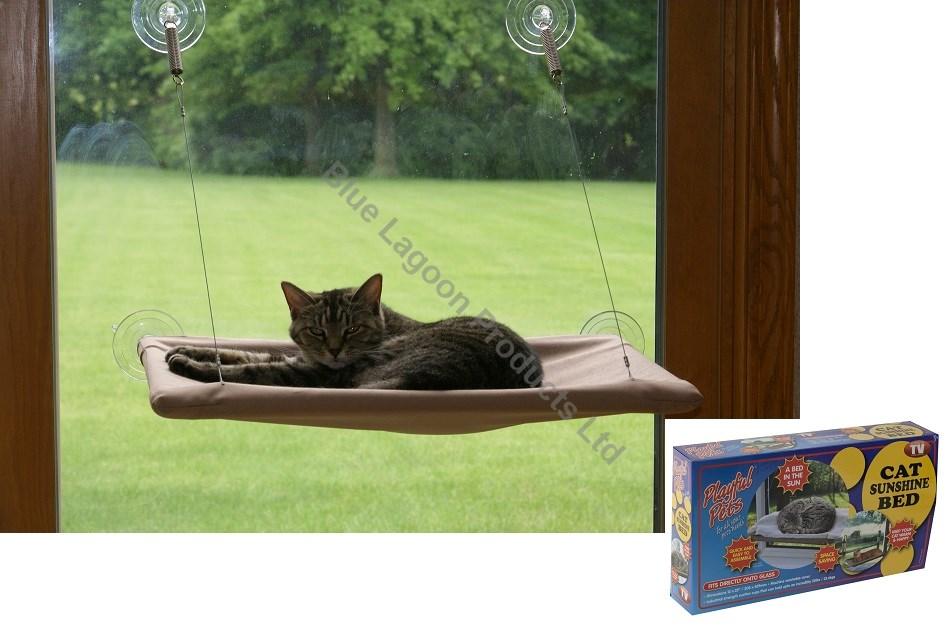 raising an indoor outdoor cat house