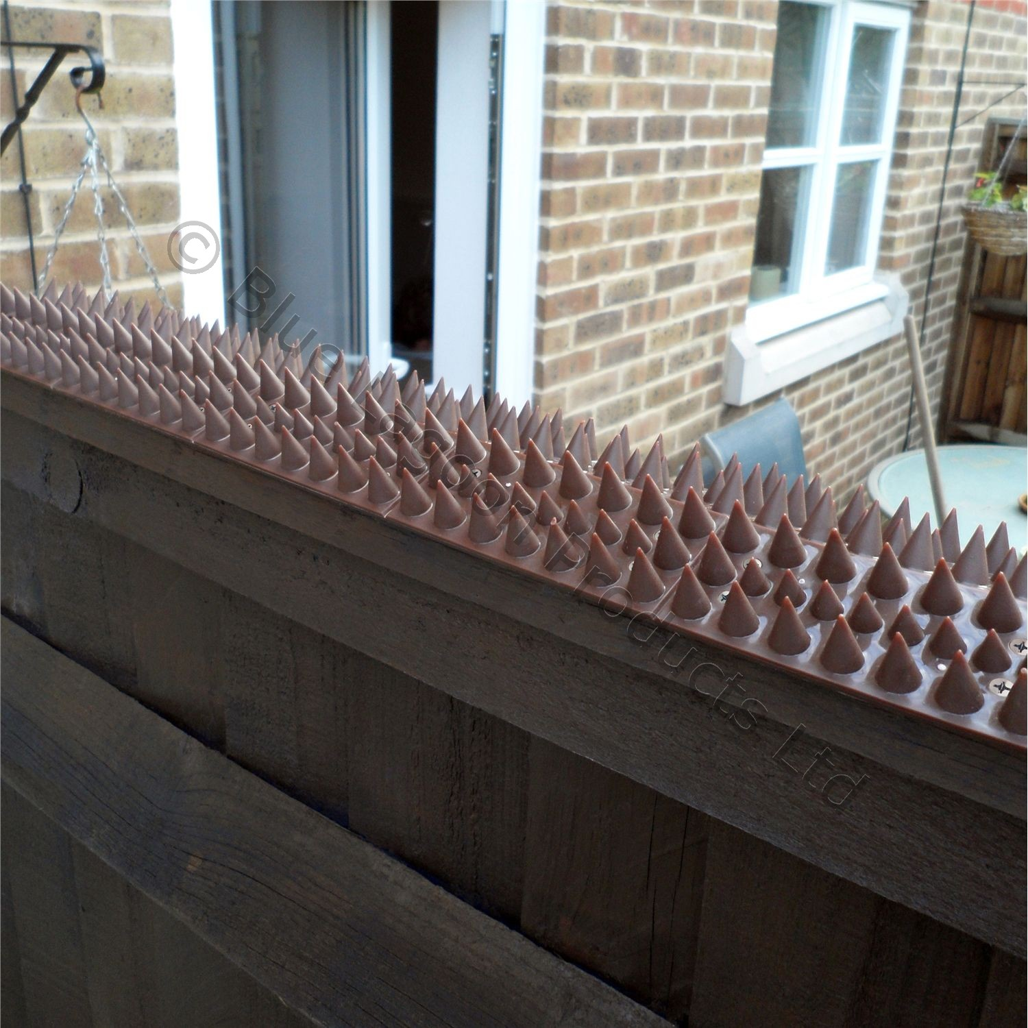 5 Metre Brown Wall Fence Spikes Anti Climb Security Cat