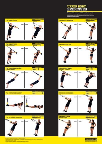 Comprehensive image regarding trx workout plan printable