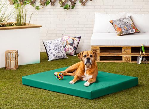 Rocky Dog Bed Chew Resistant Waterproof Heavy Duty Kennel