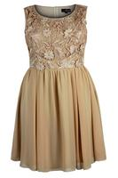 Lovedrobe Sand Lace Contrast Chiffon Dress