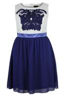 Lovedrobe Navy/White Cornelli Contrast Chiffon Dress