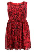 Lovedrobe Red/Black Animal Print Zip Back Dress