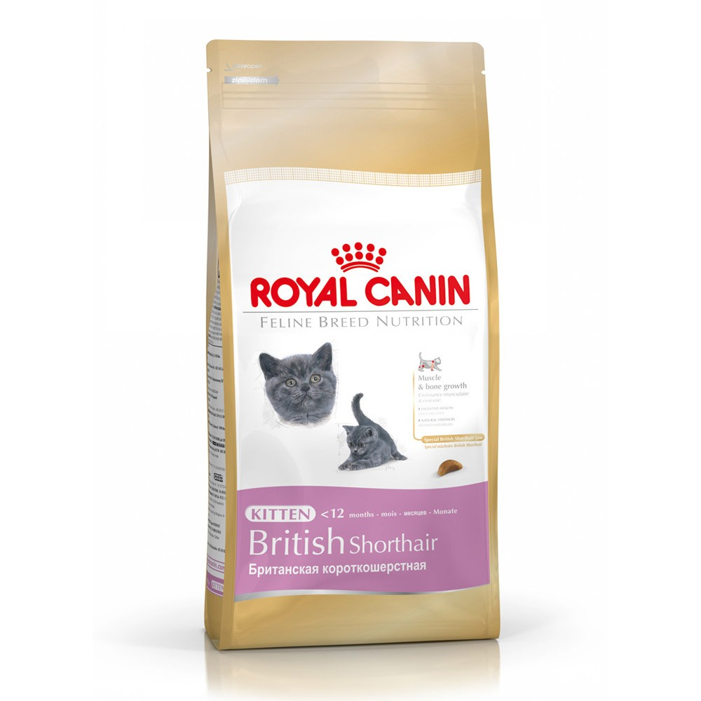 royal canin dry kitten food baby cat for british short haired cat various sizes ebay. Black Bedroom Furniture Sets. Home Design Ideas