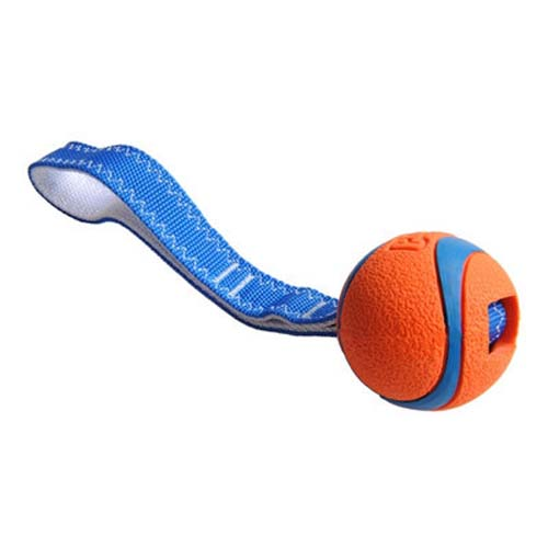 Indestructible Dog Tug Toy: Chuckit! Ultra Tug Durable Tough Dog Tug Pull Chew Toy 3