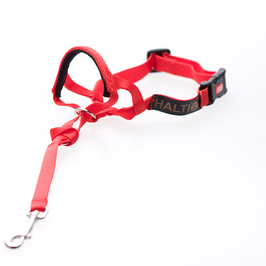 Halti-Dog-Headcollar-Stops-Pulling-Kindly-Range-of-Sizes