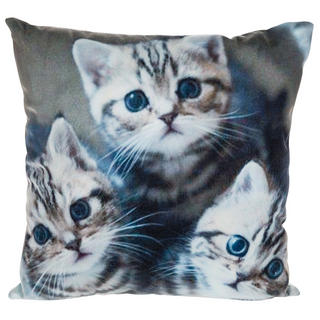 Three Kittens Visage Cushion Thumbnail 1