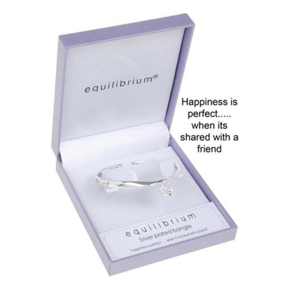 Equilibrium Silver Plated Happiness Is Perfect Shared With A Friend Bangle Gift