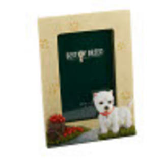 """Best Of Breed Highland Terrier Photo Picture Frame 4"""" X 6"""" Thumbnail 1"""