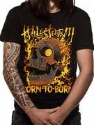 Halestorm (Fire Skull) T-shirt