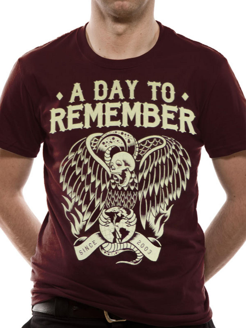 A Day To Remember  Vulture   A Day To Remember Bird