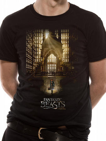 Fantastic Beasts (Hall) T-shirt Preview