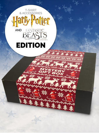 Loudclothing (Harry Potter/Fantastic Beasts) Christmas Gift Box Preview