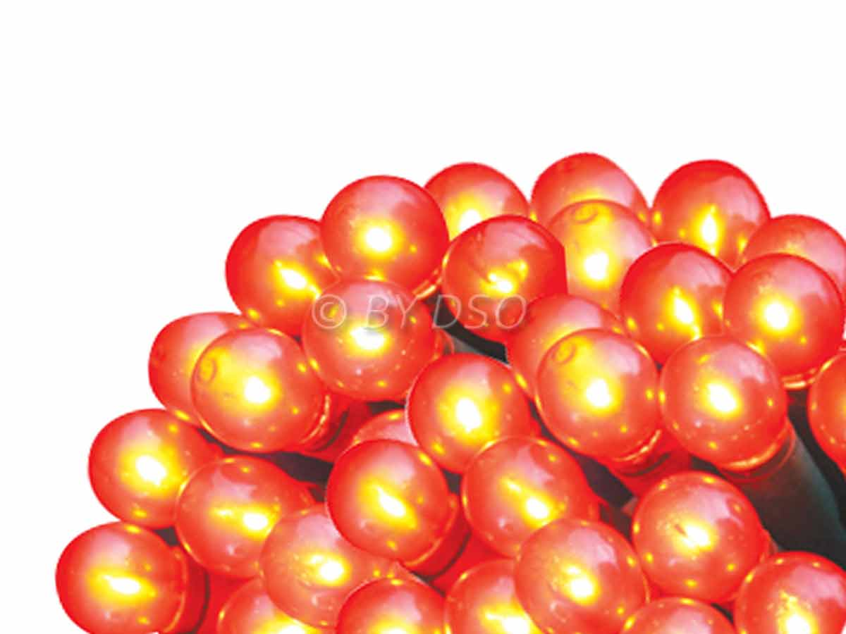 String Of Red Christmas Lights : 50 Christmas Red Berry String Lights BML78160 eBay