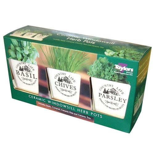 Windowsill Herb Pots Growing Kit Indoor Gardening Seeds