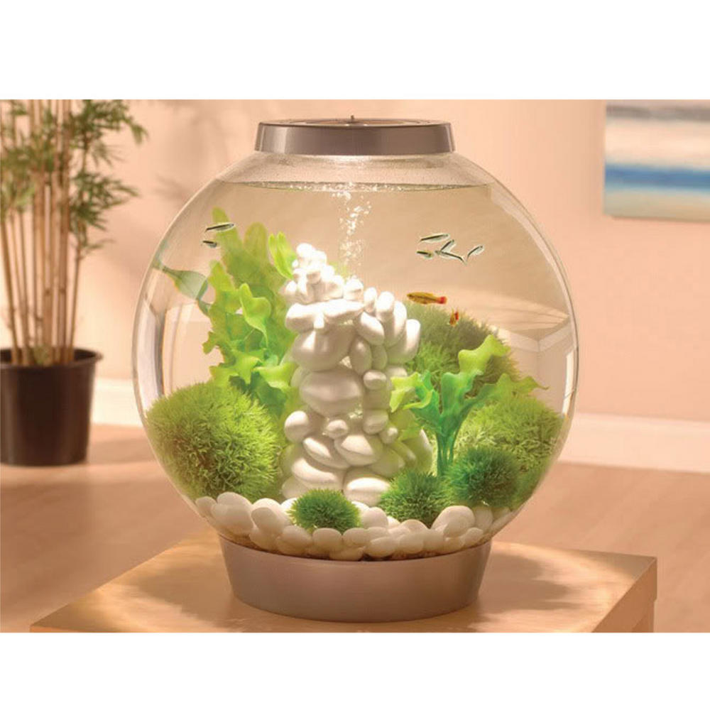 Oase Biorb Samuel Baker Pebble Aquarium Feature