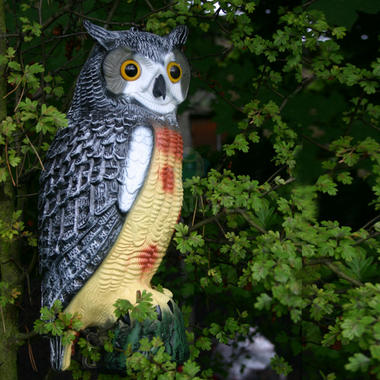 Decorative Decoy Owl - Pisces