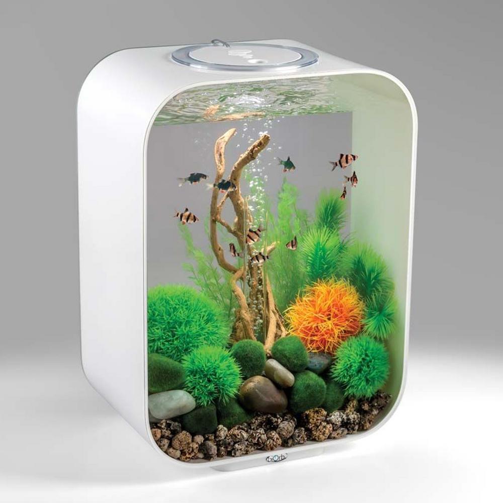 Biorb life 15l white aquarium with mcr led lighting - Petit aquarium design ...
